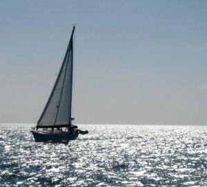 Shadowfax Sailing